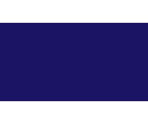 International Institute for Astronautical Sciences